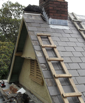 Gutter Repairs and Roof Repairs in Sydney